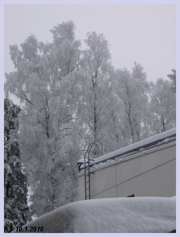 Talvi_02.jpg