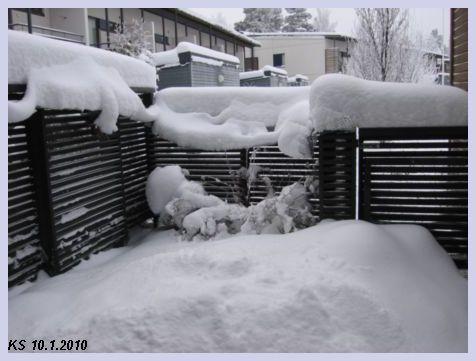 Talvi_05.jpg